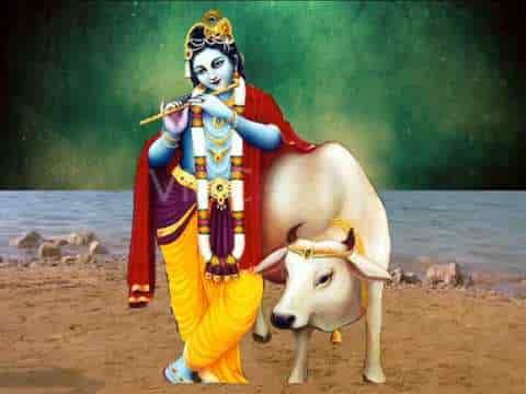 दातार हो तो दया तुम दिखा दो श्री कृष्ण भजन लिरिक्स