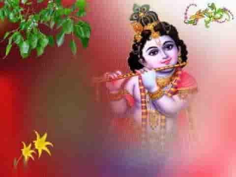 मेरी आँख भर आई कृष्ण भजन लिरिक्स